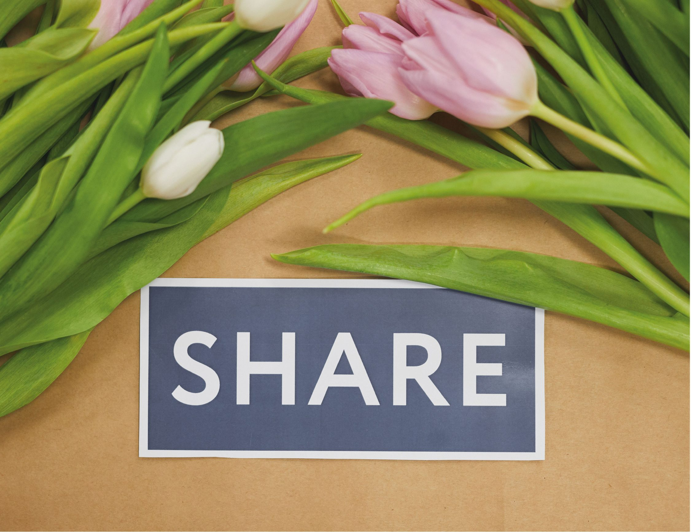 Blogs Allow Your Content To Be Shared Easily